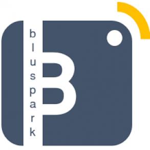 Logo BluSpark