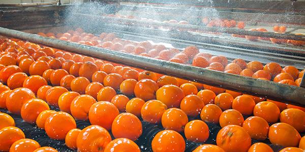 Replay du webinaire : La gestion de l'eau en industrie agro-alimentaire