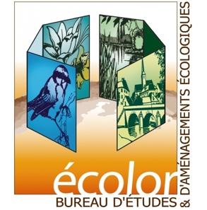 Logo Ecolor - Bureau d'études